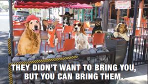 doggiesonpatioad